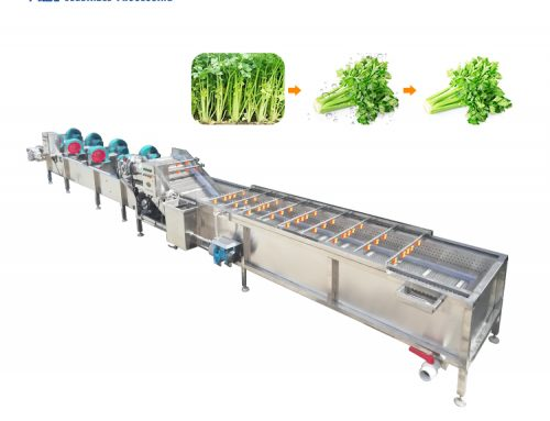 Vegetables processing machinery fruit and vegetable washing and drying machine