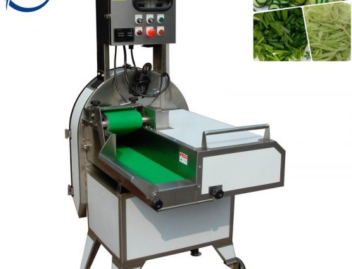Daily maintenance of multi-function vegetable cutting machine