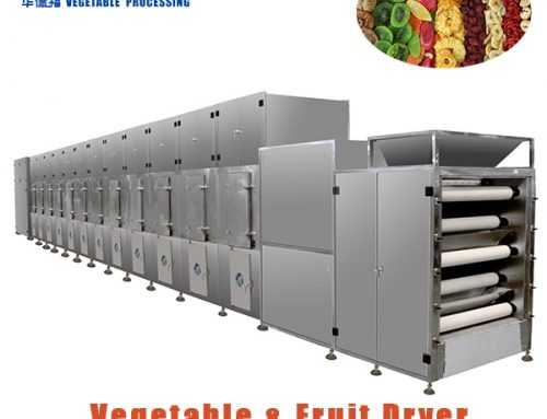 HGWD5-1.2-8B Belt Type continuous vegetable and fruit dryer dehydrator