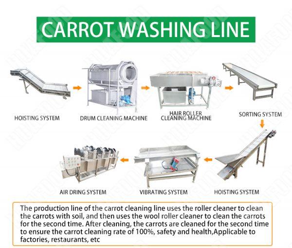 Carrot processing equipment