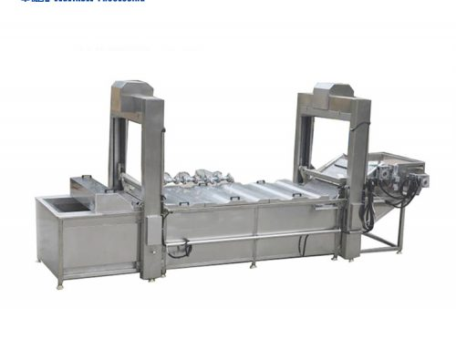 HPT-2500 vegetable potato blanch banana potato chips blanching machine