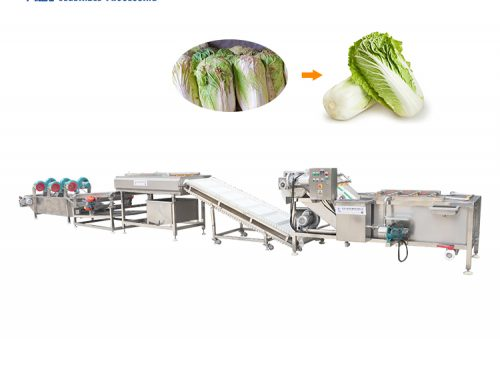 Vegetable washing and cutting processing line