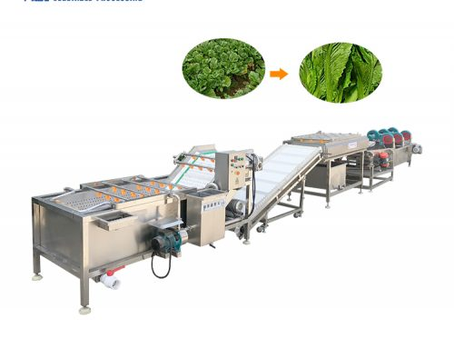 Industrial fruit and vegetable washing line