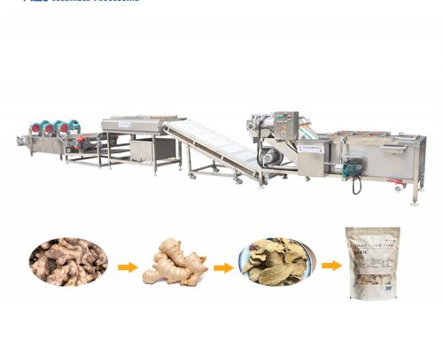 sells well Fruit and vegetable cleaning machine automatic ginger cleaning machine