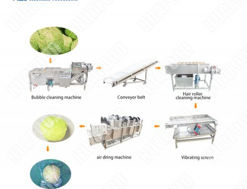 Washed vegetable cabbage cleaning processing line