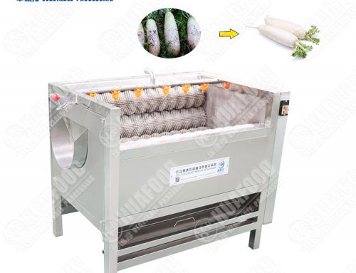 Root vegetable washing and peeling machine