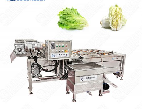 Air bubble External water circulation fruit vegetable washing machine