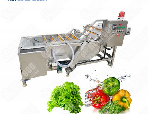 100-500kg/h output air bubble vegetable washing machine
