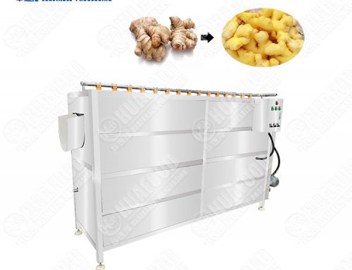 Spiral vegetable and fruit washing and peeling machine