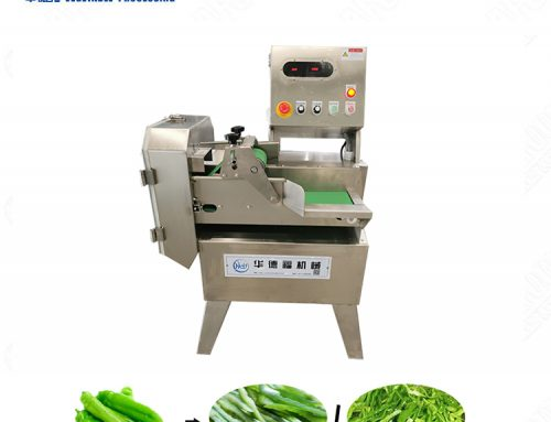 Leafy Vegetable Cutting Machine / Vegetable Cutting Machine