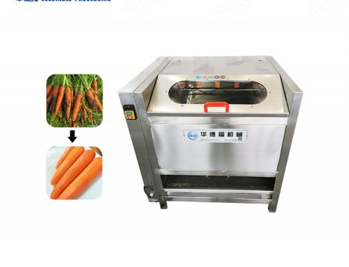 SUS 304 stainless steel beetroot and radishes washing machine
