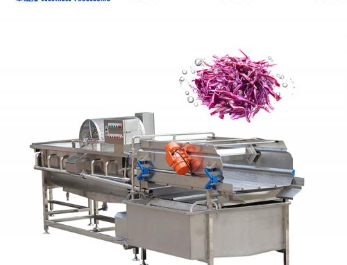 Eddy cleaning machine/vortex vegetable washing machine
