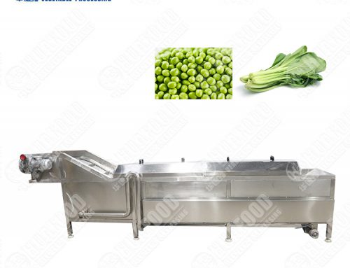 Automatic Fruit Vegetable Cabbage Garden Bean Blanching Machine