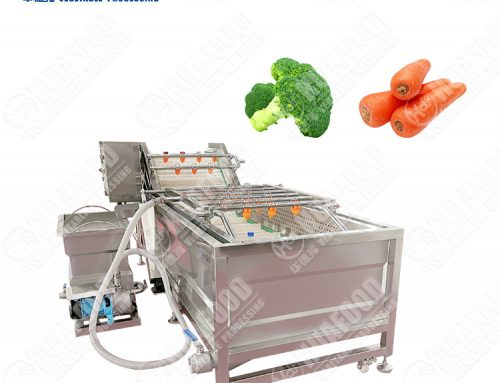 Bean Washing Machine China Supplier Bean Washing Machine Leaf Vegetable Bubble Washer Suppliers