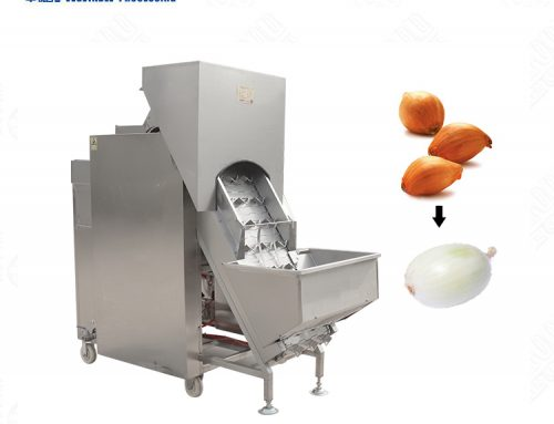 Onion skin removing/peeling processing machine