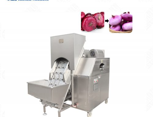 Multi-function onion stripping washing machine