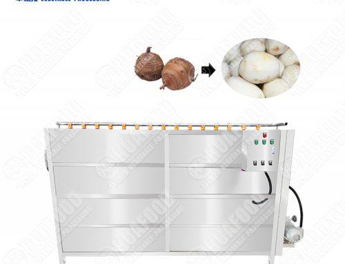 Vegetable Fruit Apple Raisin Washing Removing Impurity Polishing Machine