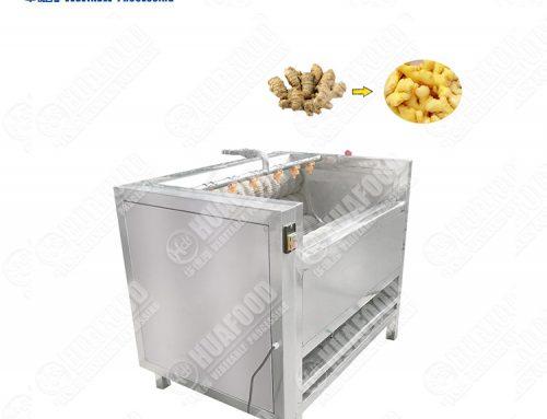 Cheap Price Potatoes Washing Cleaning/Peeling Machine/Brush Type Washer/ Peeler for Carrots