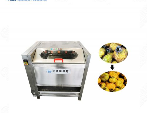SUS 304 stainless steel Prickly pear washing machine