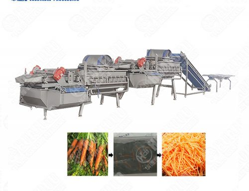 Vortex Vegetable lettuce Washing Processing,Cycle cleaning Salad Washer