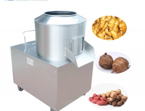factory price vegetable and fruit washing machine with brushes