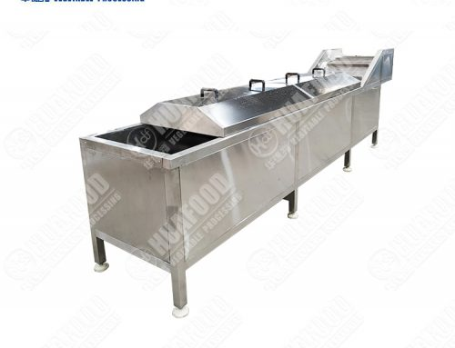High safety level vegetable blancher fruit steam blanching machine