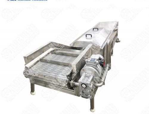 professional stainless steel vegetable steam blanching machine