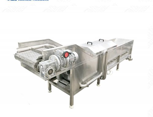 Commercial Used Steam Blanching Equipment Blanching Machine Processing Line For Chili