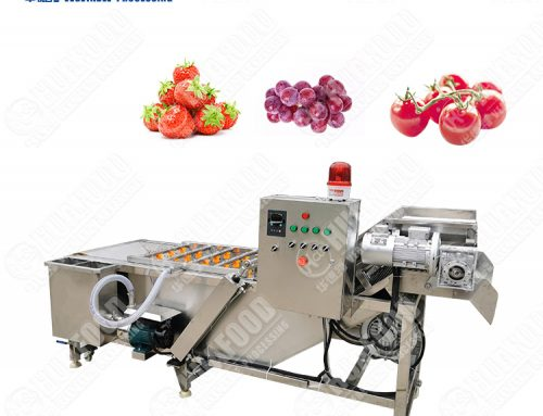 factory price fresh vegetable washing machine to wash fruit