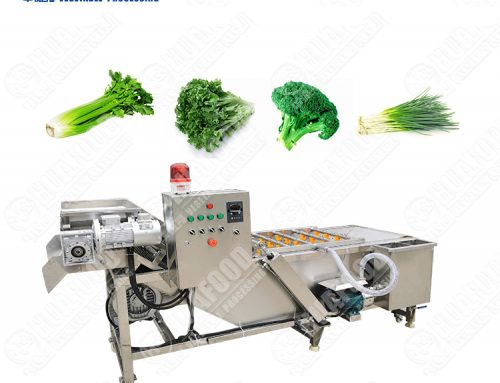 well received wholesale vegetable ozone washing machine