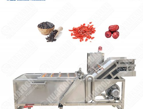 Washing drying Surf spray dry fruit grape vegetable cleaning machine