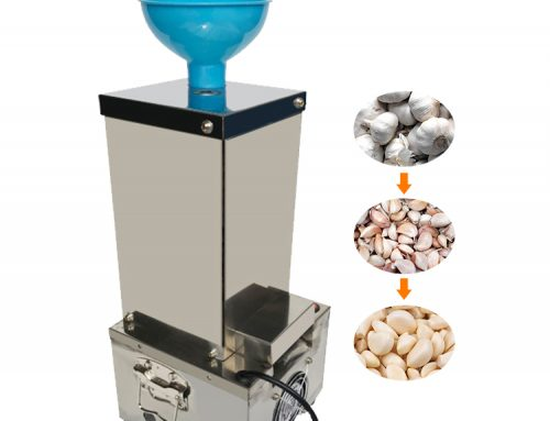 Garlic Peeling Machine / Garlic Skin Removing Machine / Garlic Peeler