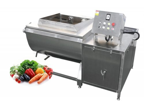 Small Vegetable Fruit Processing Washing Machine