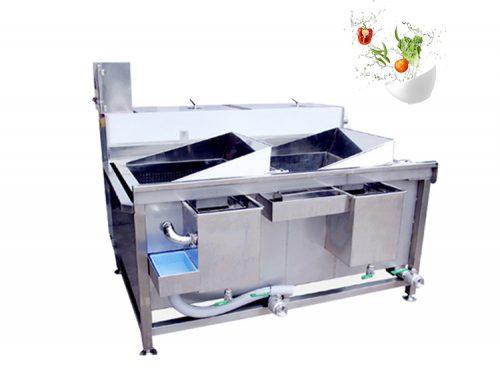 Multi-function Double trough vegetable washing machine