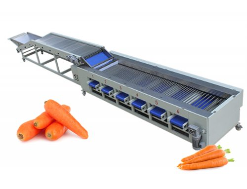 Fruit and Vegetable Sorting Machine Carrot Onion Potato Grading Machine
