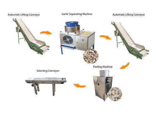 Garlic Processing Machines / Garlic Peeling Machine Production Line